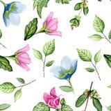 Modèle blanc floral Image stock