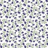 Modèle bleu sans couture de baie Backgroun botanique carrelé de vecteur avec la myrtille Conception décorative de texture de papi Image stock