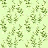 Modèle botanique sans couture de feuilles d'aquarelle illustration libre de droits