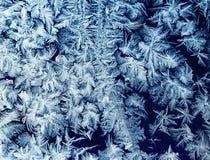 Modèle brillant de gel de beau Noël sur l'espace libre en verre m d'hiver Images stock