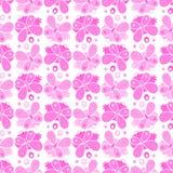 Modèle butterfy monochrome Photo libre de droits
