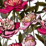 Modèle coloré avec les fleurs et les feuilles lumineuses de Images libres de droits