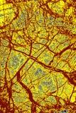 Modèle coloré et abstrait de minerai dans un micrographe de polarisation photographie stock