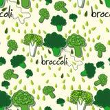 Modèle coloré lumineux avec le brocoli Image libre de droits