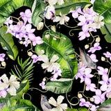 Modèle coloré lumineux d'aquarelle avec des feuilles des paumes et de Mons Photographie stock libre de droits