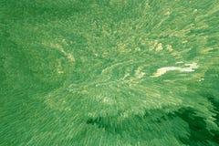 Modèle convexe lunatique de couleur vert clair de fraîcheur de fines herbes pour le fond avec la texture inégale image stock