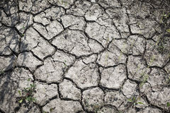 Modèle créé d'une terre criquée de photo Temps sec, sécheresse Photo libre de droits