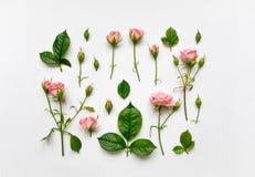 Modèle décoratif avec les roses, les feuilles et les bourgeons roses sur le fond blanc Configuration plate, vue supérieure Image stock