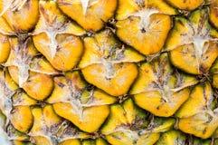Modèle d'ananas Images stock