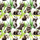 Modèle d'animal sauvage de panda dans un style d'aquarelle Photo stock