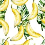 Modèle d'aquarelle avec des bananes et des feuilles Photo libre de droits