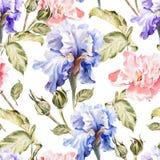 Modèle d'aquarelle avec des fleurs iris, pivoines Images stock