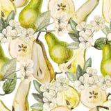 Modèle d'aquarelle avec des poires et des fleurs Photo stock