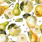 Modèle d'aquarelle avec des pommes et des poires Photographie stock