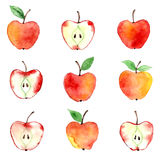 Modèle d'aquarelle d'Apple Images libres de droits