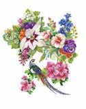 Modèle d'aquarelle de fleurs de jardin et d'oiseaux de faisan Image libre de droits