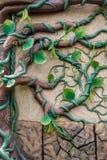 Modèle d'arbre et de feuille sur le mur en pierre Images libres de droits