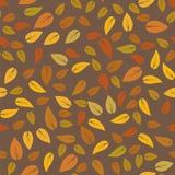 Modèle d'Autumn Floral Seamless Different Leaves Photos libres de droits