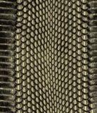 Modèle d'or de peau de serpent Serpent de texture Copie ? la mode Mode et fond ?l?gant illustration stock