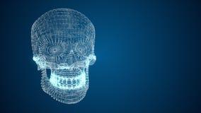 modèle 3d du crâne humain des lignes et de l'abstraction de points Photos stock