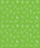 Modèle d'herbes Photo libre de droits
