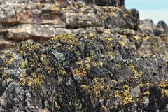 Modèle d'Intresting sur la formation de roche images stock