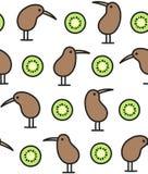 Modèle d'oiseau et de kiwis Photo libre de droits