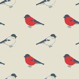 Modèle d'oiseaux Images libres de droits