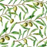 Modèle d'olive d'aquarelle Ornement floral sans couture peint à la main avec la baie et les branches d'arbre olives avec des feui illustration stock