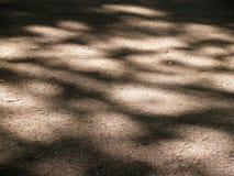 Modèle d'ombre sur une terre Image libre de droits