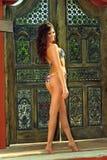 Modèle dans le bikini Photos libres de droits