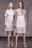 Modèle de belles amies de femmes dans des robes molles avec le long ha Images stock