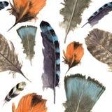 Modèle de boho de plumes d'oiseaux d'aquarelle Texture sans couture avec les plumes tirées par la main Illustration pour votre co Image libre de droits