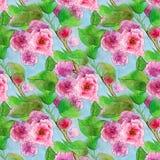 Modèle de bouquet floral d'aquarelle de branche de fleur de Sacura illustration libre de droits