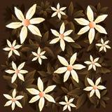Modèle de brun de camomille de vecteur images stock