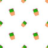Modèle de cactus Photo stock