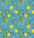 Modèle de citron Image libre de droits