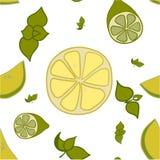 Modèle de citron, de chaux et de feuilles en bon état Photographie stock
