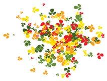 Modèle de confettis d'oxalide petite oseille illustration stock