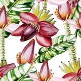 Modèle de couleur d'eau avec des fleurs et des feuilles de banane Photos stock