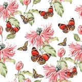 Modèle de couleur d'eau avec des fleurs et des papillons de pavot Photo libre de droits