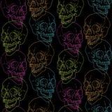 Modèle de crâne Images libres de droits
