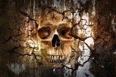 Modèle de crâne sur le mur criqué Photo libre de droits