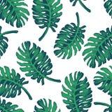 Modèle de croquis de palmier Images libres de droits