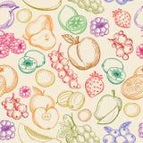 Modèle de croquis de fruits Photo libre de droits