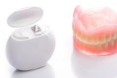 Modèle de dents avec le fil dentaire sur le fond blanc Photo libre de droits