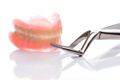 Modèle de dents avec le forceps sur le fond blanc Photo stock