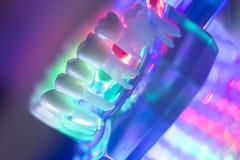 Modèle de dents de dentiste Photo stock