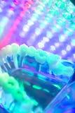 Modèle de dents de dentiste Photos libres de droits
