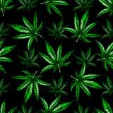 Modèle de feuille de marijuana Photo libre de droits